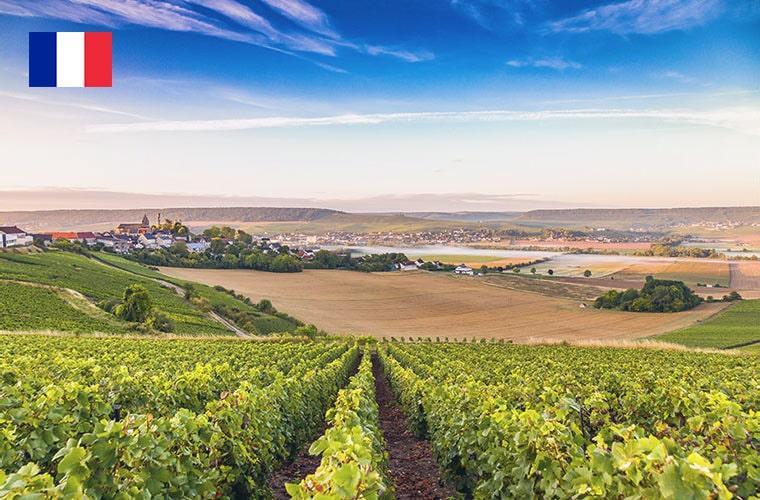 フランス その他レアワイン